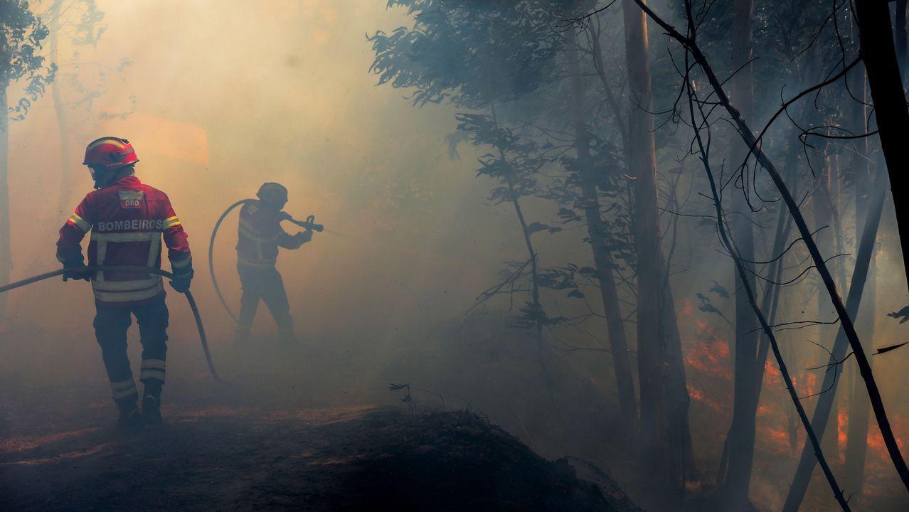 Varios bomberos luchan contra las llamas en el frente de Belem, cerca de Monchique, en el Algarve portugués