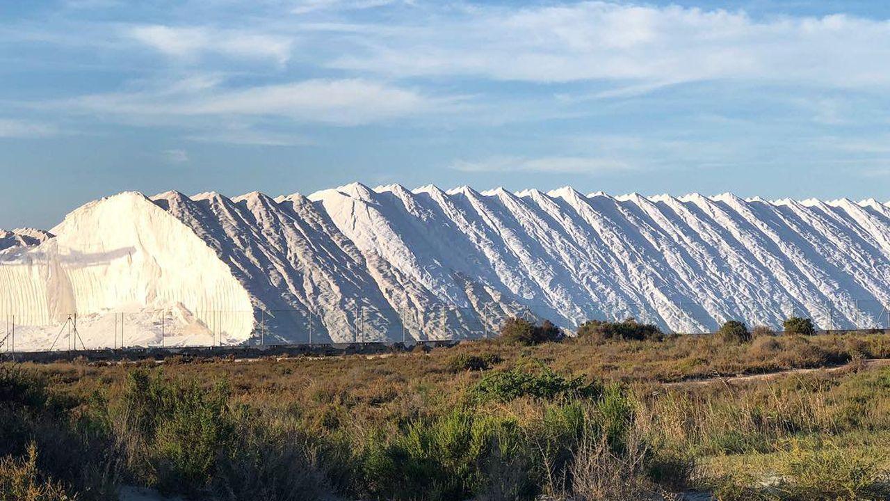 Explotación salina en Santa Pola