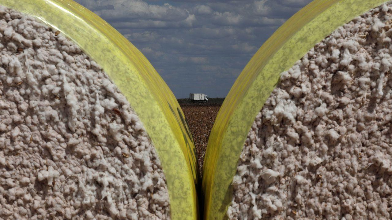 Un camión transporta fardos de algodón, en Brasil