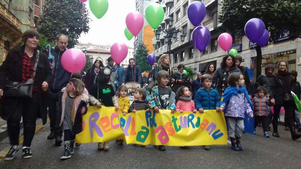 Manifestación pola oficialidá del asturianu.Belén Fernández