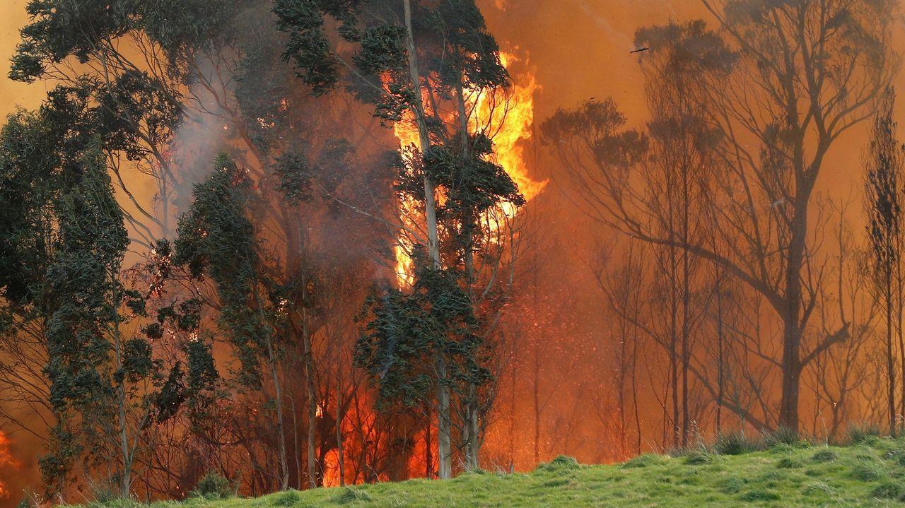 Una tromba de agua provoca pequeñas inundaciones en Vilagarcía.Incendio en las proximidades de Naves (Llanes)