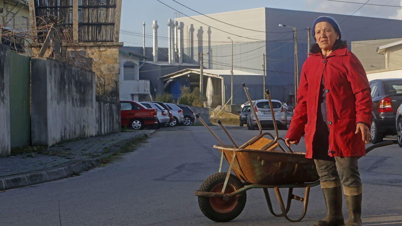 La economía de Portugal conduce a varias velocidades.Las ninfas del cuadro retirado en Manchester abren el debate sobre el papel de la mujer