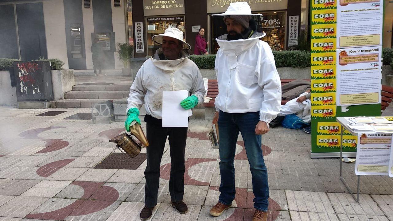 Protesta en Oviedo organizada por los apicultores