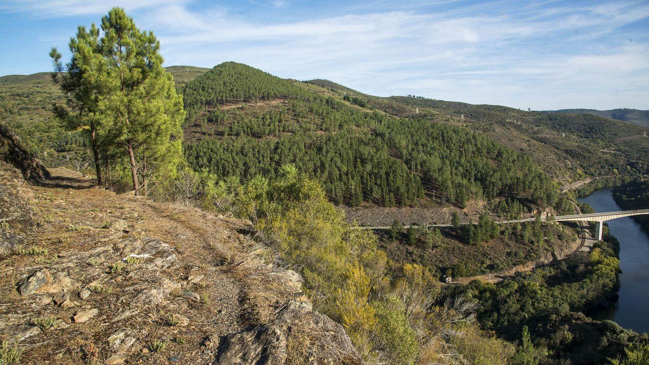 Un tramo del camino que lleva a la mina de Piñeira, cerca de Figueiredo