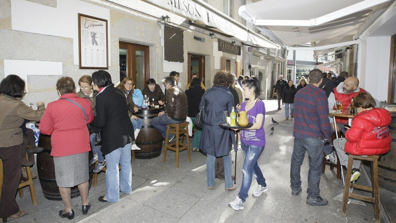 Pedro Soto, del Cat Café, en el municipio de Cambre, con los gatos.