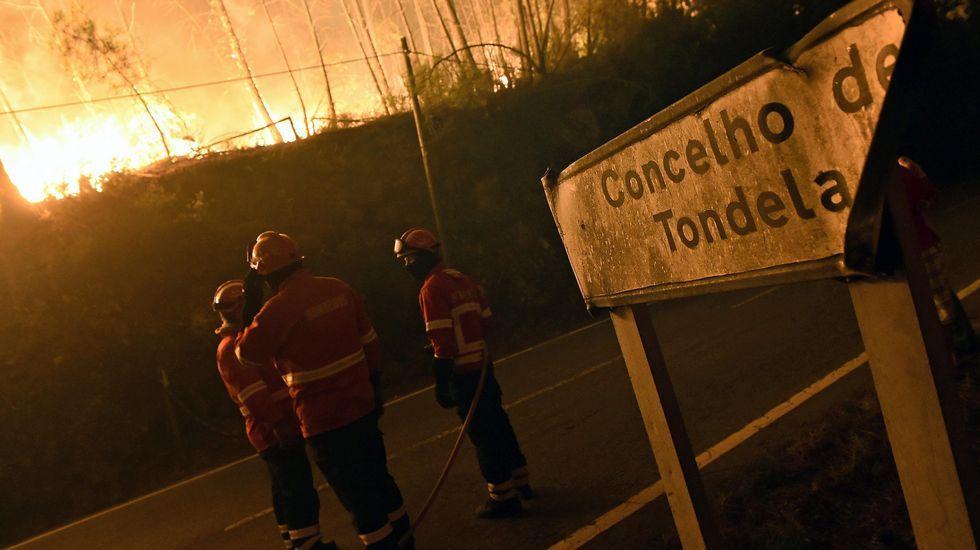 Labores de extinción del incendio en Couto de Cima y Couto de Baixo, en Viseu