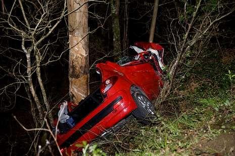 El coche quedó aplastado tras el choque contra un eucalipto.