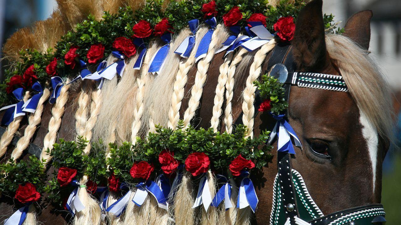 Detalle de los adornos de uno de los caballos de una procesión de Pascua en Traunstein