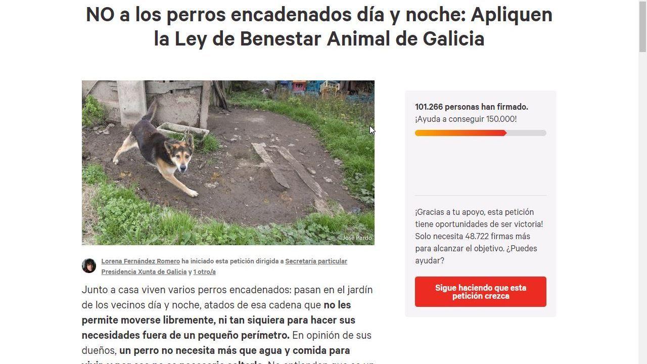 Perro encontrado La Acebera.Imagen de archivo de un matadero de pollos