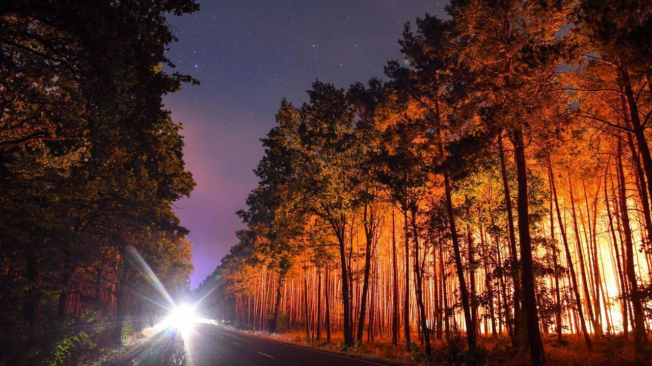 .Las llamas consumen un importante bosque de Alemania.