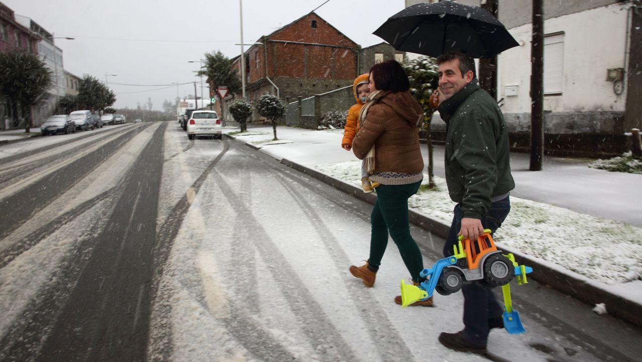 Nieve en Cerceda