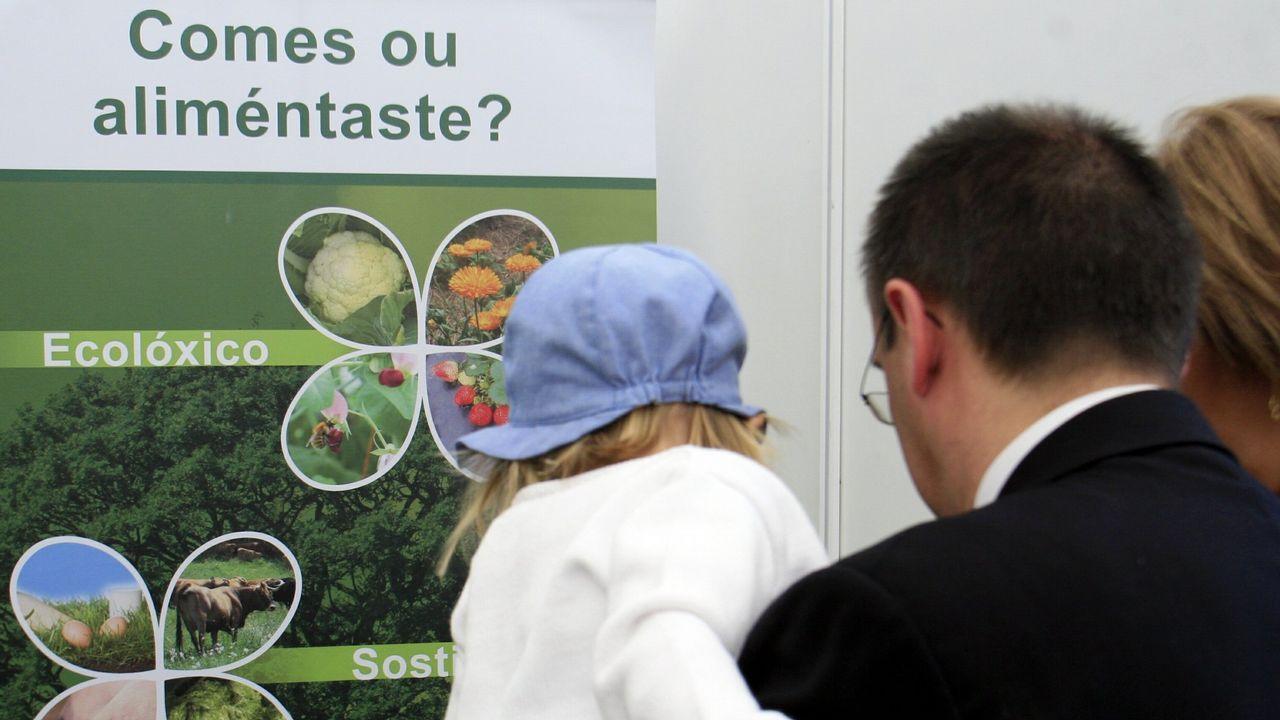 La agricultura ecológica, de aniversario y en crecimiento