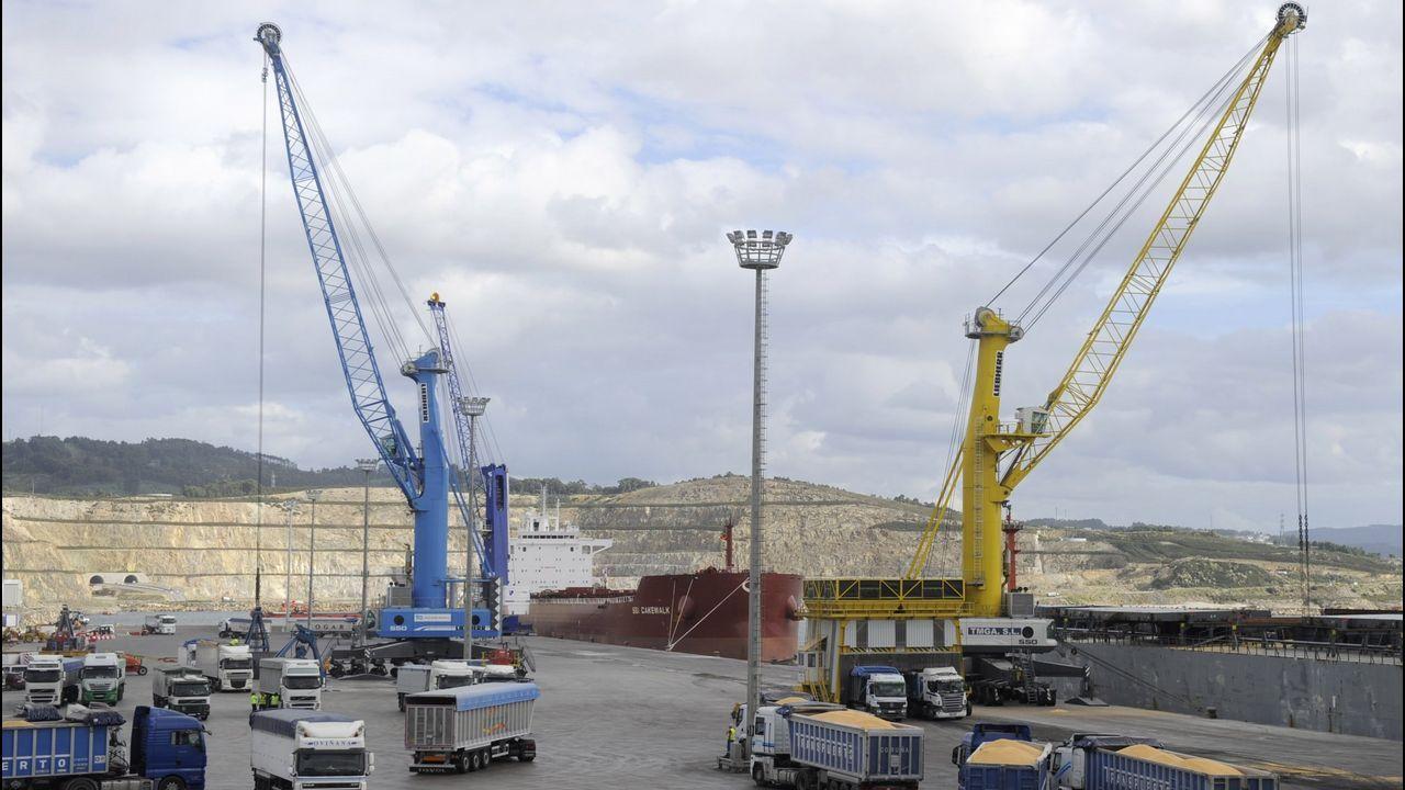 Varias cadenas han llegado a Odeón en los últimos meses