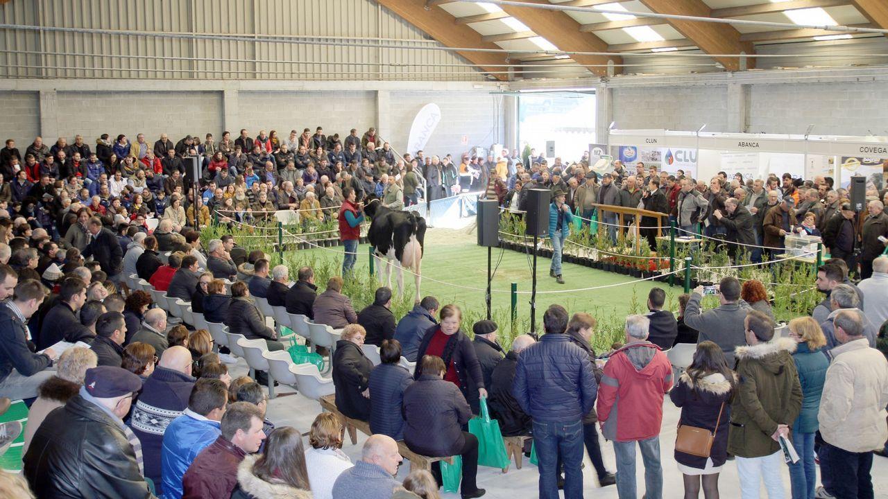 ¡Mira aquí las imágenes de la subasta de vacas de la Semana Gandeira de Mazaricos!.Ruta didáctica ambiental por el Macizo Central de la provincia de Ourense