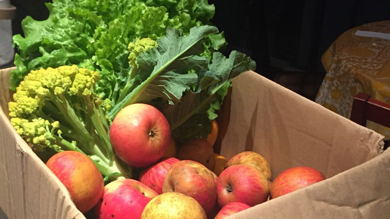Las verduras y hortalizas le llegan en una caja