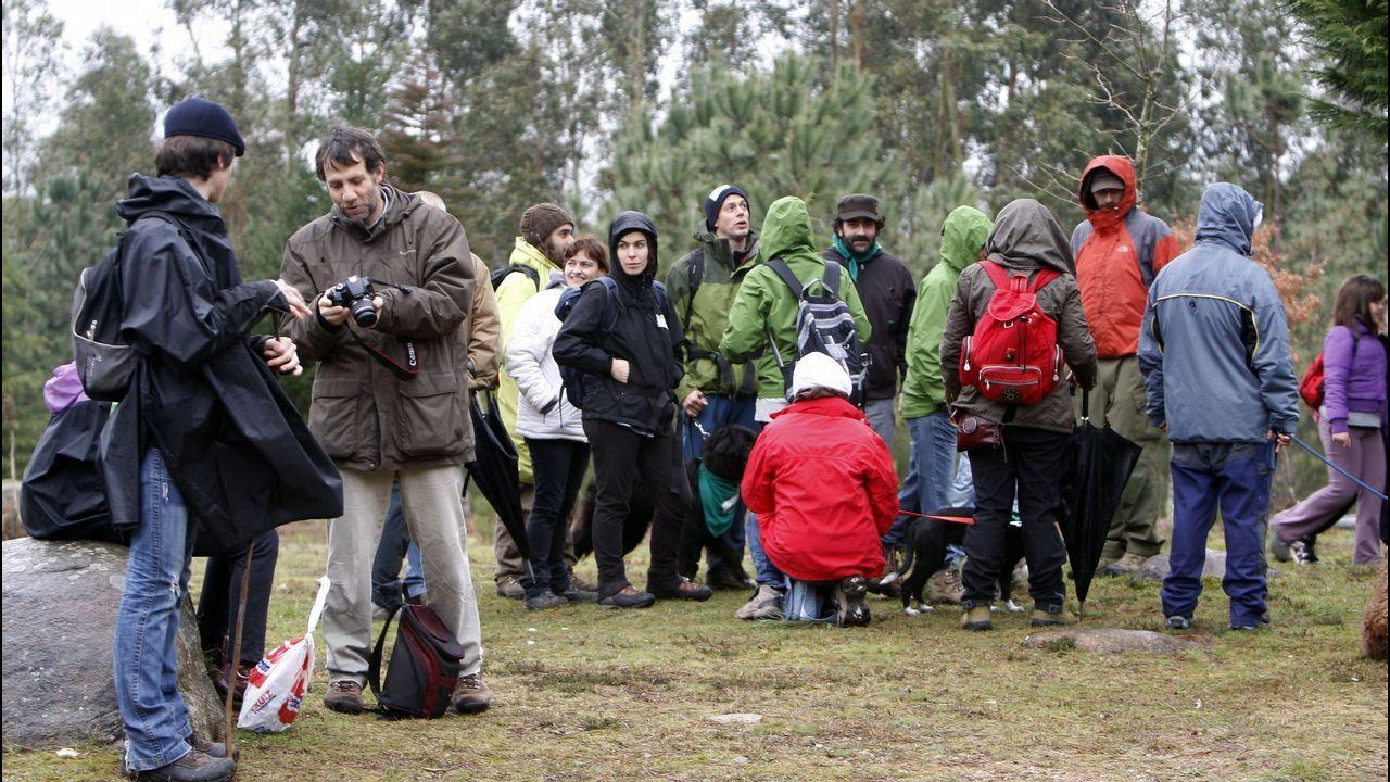 567 activistas en la andaina para proteger la Serra do Galiñeiro.Cheluis rescatado con sus compañeros