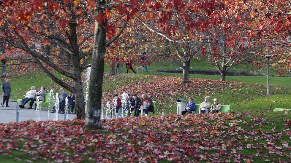 Otoño en el parque de Vioño