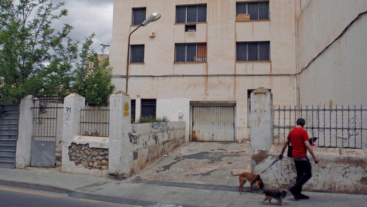 Entrevista a Ignacio Blanco (VOX).La plantación estaba en el interior de una fábrica abandonada en Elda