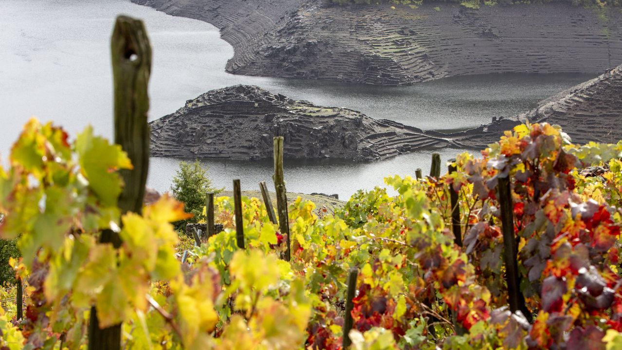 Castro Candaz desde las viñas de Sobrecedo