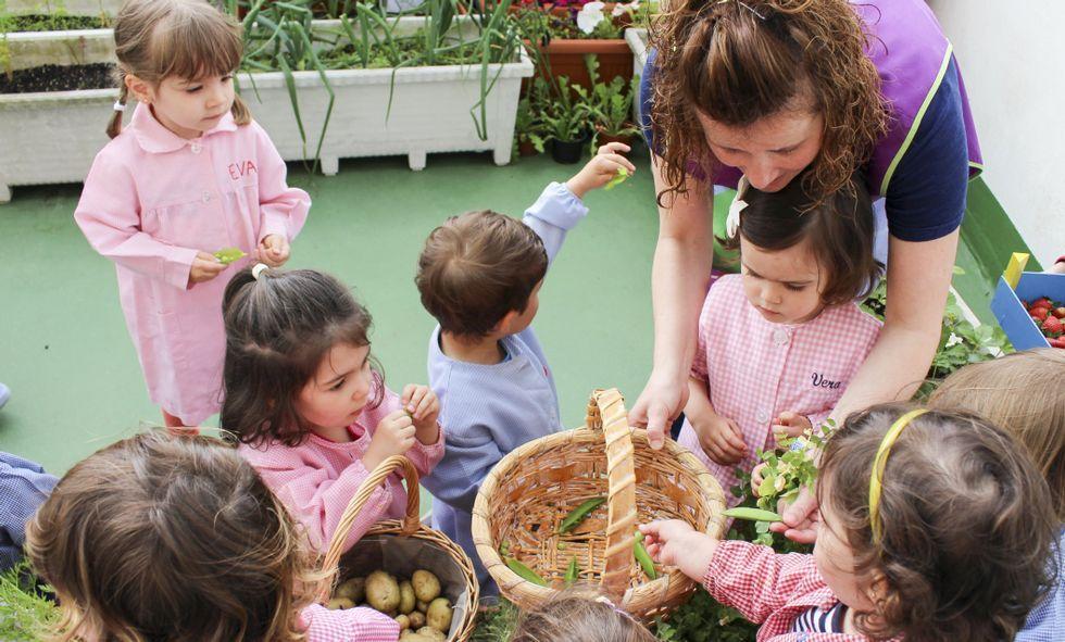 Los niños recogieron los productos ecológicos plantados a inicios del curso escolar.