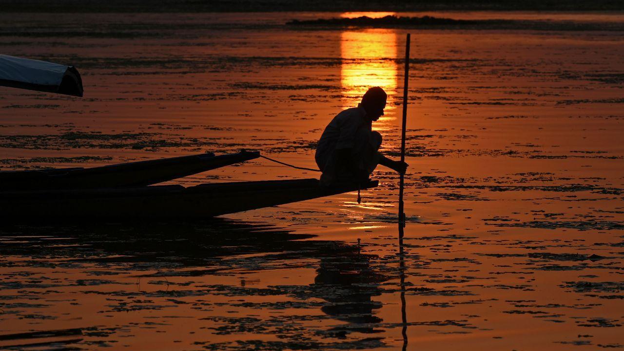 Un pescador Kashmiri navega por el lago Srinagar, durante una puesta de sol.