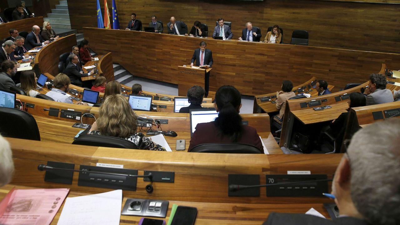 El presidente del Principado, Javier Fernández, interviene ante el pleno de la Junta General