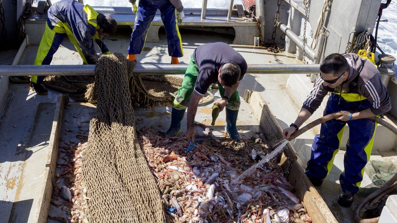 Los miembros de la fundación RepescaPlas, en una de sus jornadas de trabajo recogiendo basura del mar