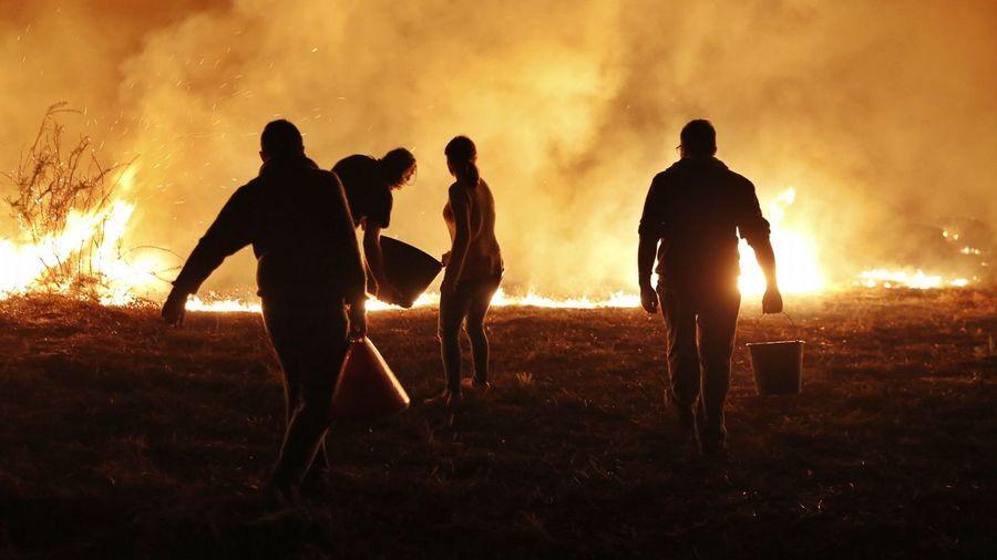 Galiza, incendios: La Xunta admite que en As Fragas do Eume han ardido 750 hectáreas.  - Página 6 O16O7025