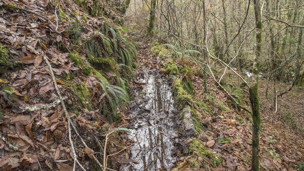 Un antiguo canal de regadío en A Ribeira