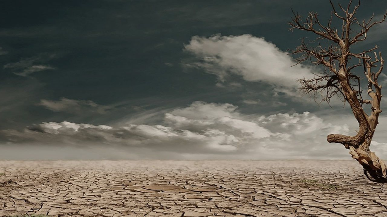La Tierra, un poco más cerca de acabar como Venus.