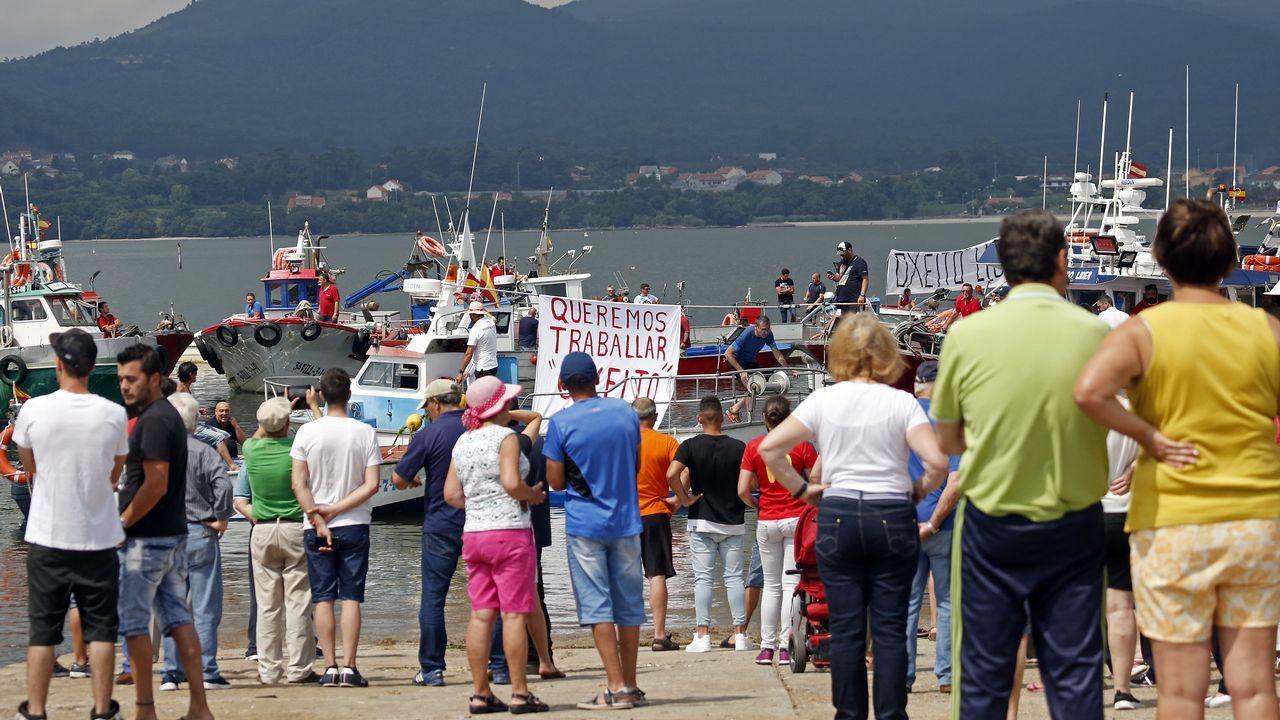 Tiburones en Galicia: «Son crías de quenlla, os adultos non se acercan á costa».Un barco ecologista persiguiendo en aguas tailandesas a un buque dedicado a la pesca ilegal de merluza