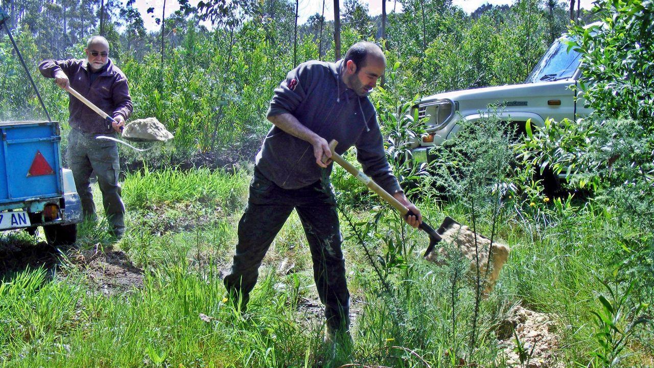 Cazadores del tecor O Faisán echan alimento en los comederos de jabalíes en una foto de archivo