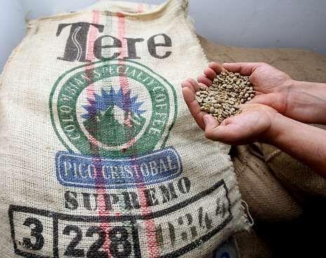 Toda la actualidad de las selecciones.La empresa arousana trabaja con cafés especiales de todo el planeta.