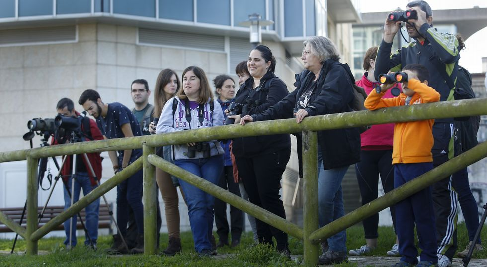 Miles de pajaritas de papel vuelan al Congreso en defensa de Doñana.Dormir el número de horas necesario es imprescindible para mantener la atención en el aula