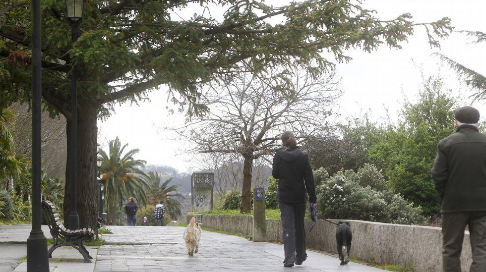 10 de Marzo reivindicativo bajo la lluvia de Ferrol.El Cafetín y la carnicería José Antonio son dos de los seis puestos que seguían abriendo los viernes por la tarde durante las últimas semanas
