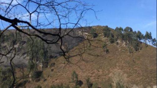 Así quedó el monte incendiado en Tineo