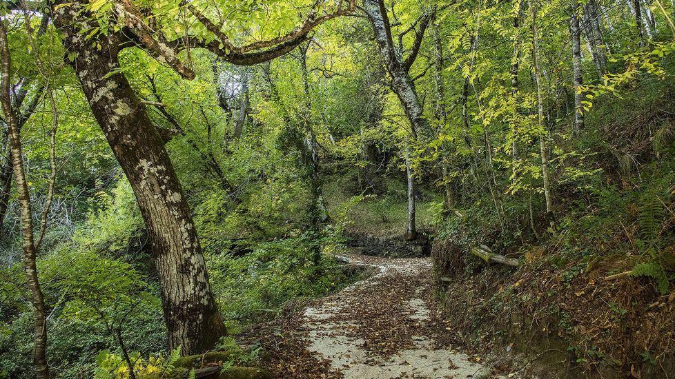 Un paseo en imágenes por Cortes y sus alrededores