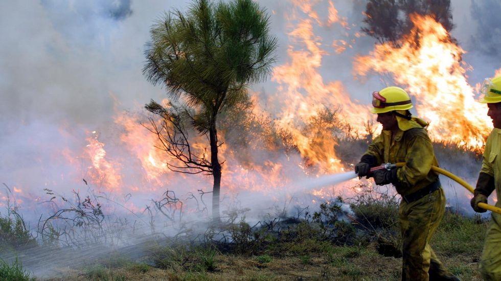 Cuatroribeirenses que viven en Washington llegaron en moto hasta Ribeira.Incendio forestal en la parroquia de Igrexafeita, en O Saviñao, en una imagen de archivo