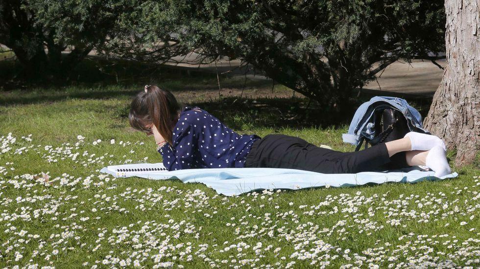Contaminación en Gijón.Una joven hoy, tumbada al sol, en el parque de San Francisco de Oviedo