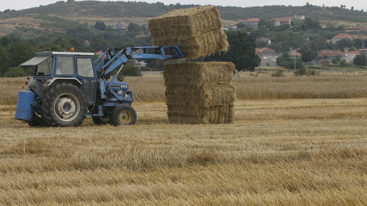 Paisajes en el corazón de la Ribeira Sacra.Un tractor, en Vilar de Santos (Ourense)