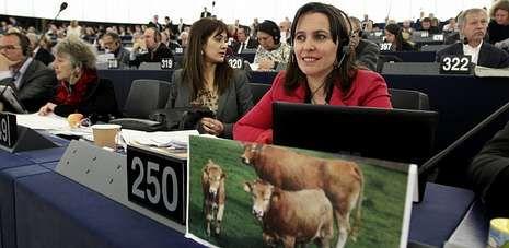 La eurodiputada del BNG, Ana Miranda, ayer en el Parlamento de Estrasburgo durante la votación de la nueva política agraria común.