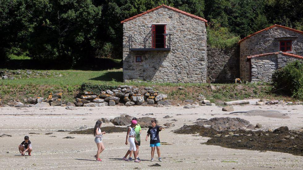 .Visita escolar a Cortegada, que forma parte del parque nacional de las Illas Atlánticas