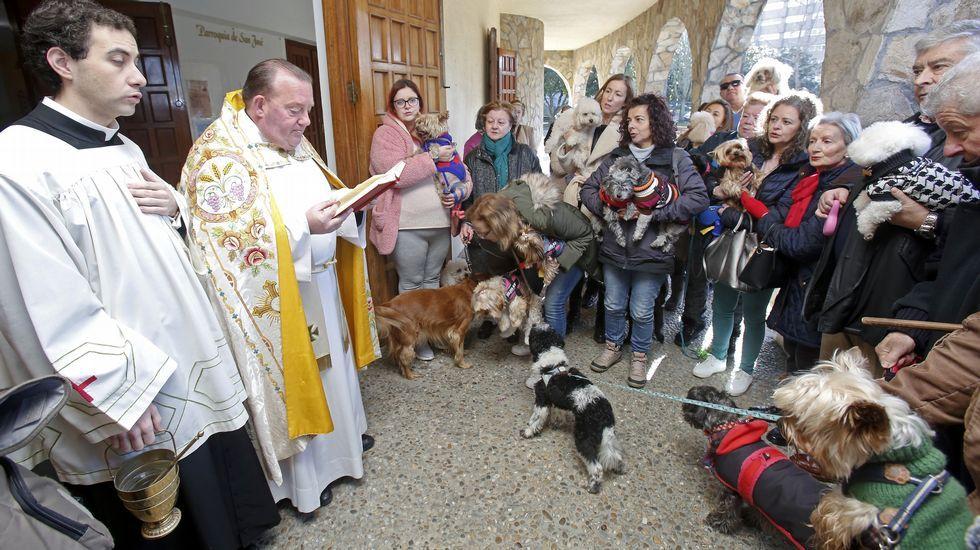 Bendición de mascotas en la iglesia de Campolongo