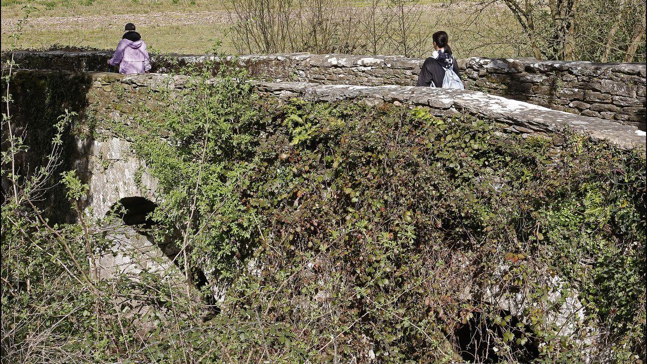 La maleza oculta las características del puente da Áspera