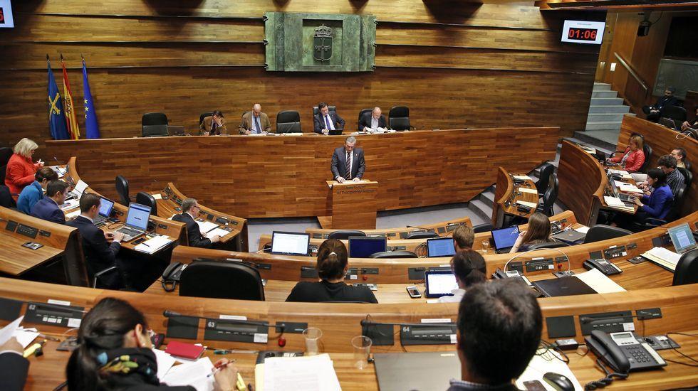 Fernández, en una votación en la Junta