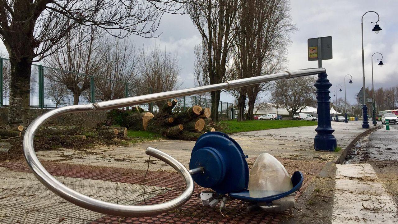 Los policías de Vigo exigen sueldos iguales a los bomberos.Los bomberos cortar el árbol que se cayó sobre la carretera de Samil llevándose por delante también una farola