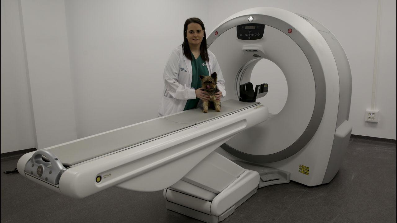 .HOSPITAL PARA MASCOTAS 4 DE OCTUBRE Paloma González de Ramos, responsable del centro veterinario