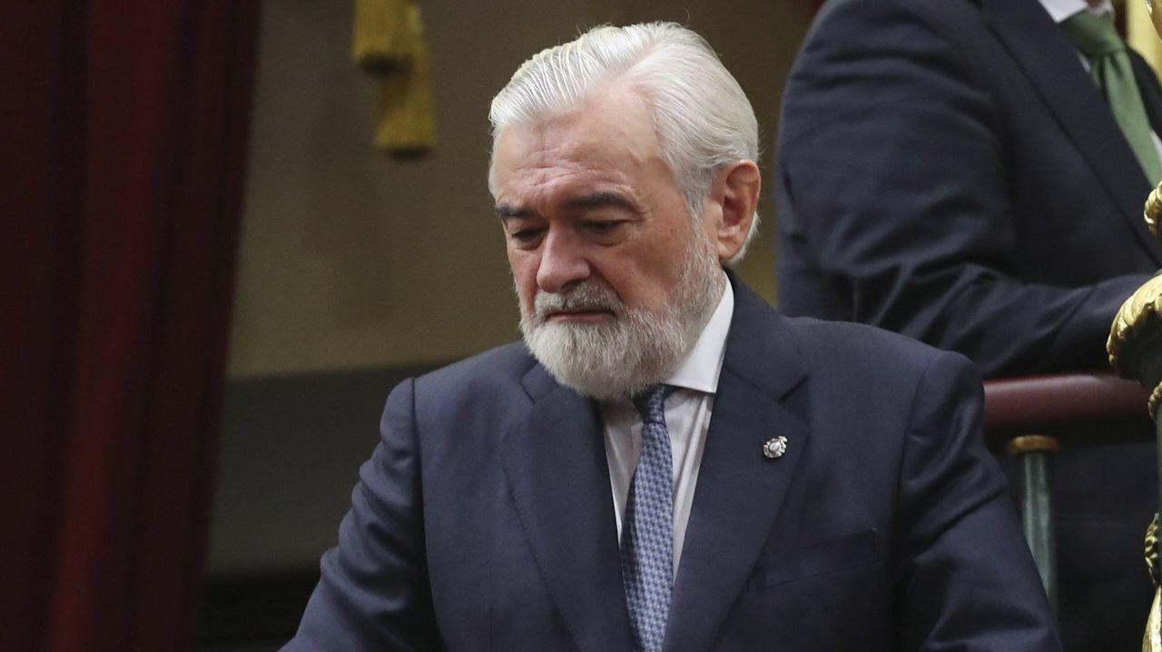 Las nutrias llegan al Lagares.Darío Villanueva, director saínte de Real Academia Española