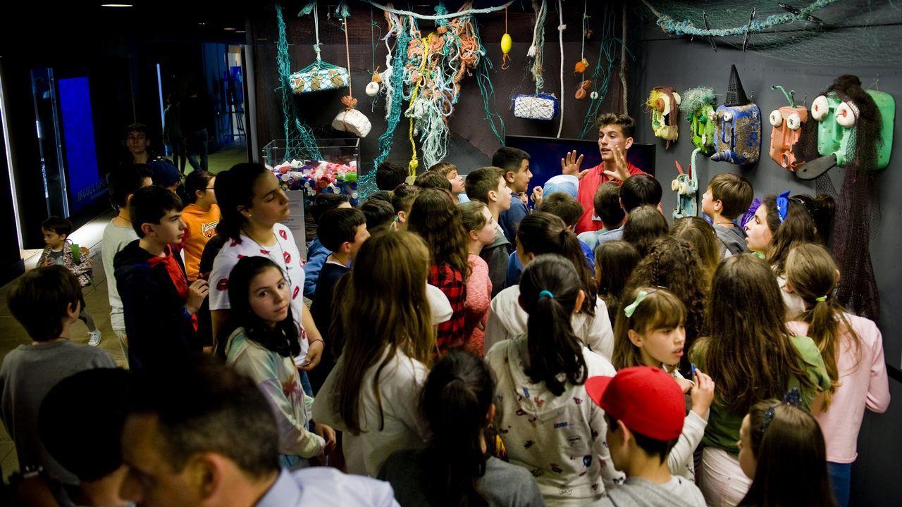 Los museos coruñeses celebran la Semana de la Ciencia.xposición «A astronomía como cha contan» na Casa das Ciencias