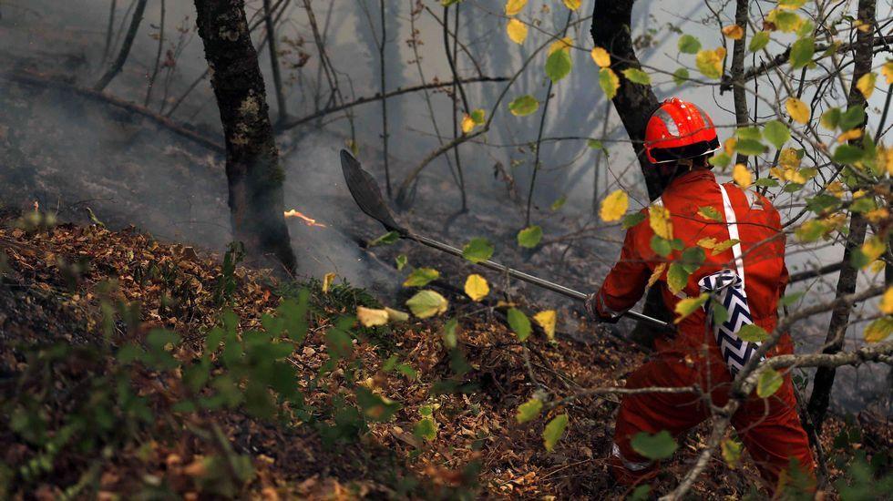 .Un bombero participa en las labores de extinción del incendio declarado en Asturias